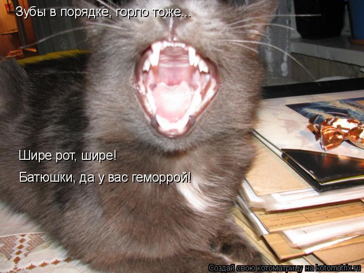 Котоматрица: Зубы в порядке, горло тоже... Шире рот, шире! Батюшки, да у вас геморрой!