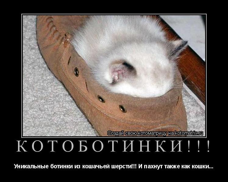 Котоматрица: КОТОБОТИНКИ!!! Уникальные ботинки из кошачьей шерсти!!! И пахнут также как кошки...