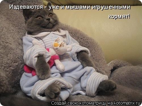 Котоматрица: Издеваются - уже и мышами игрушечными  кормят!