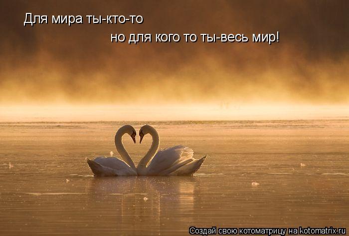 Котоматрица: Для мира ты-кто-то   но для кого то ты-весь мир!
