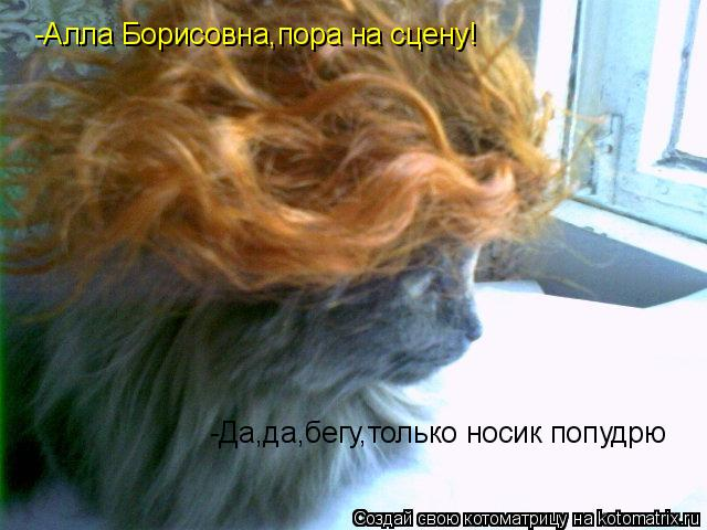 Котоматрица: -Алла Борисовна,пора на сцену! -Да,да,бегу,только носик попудрю