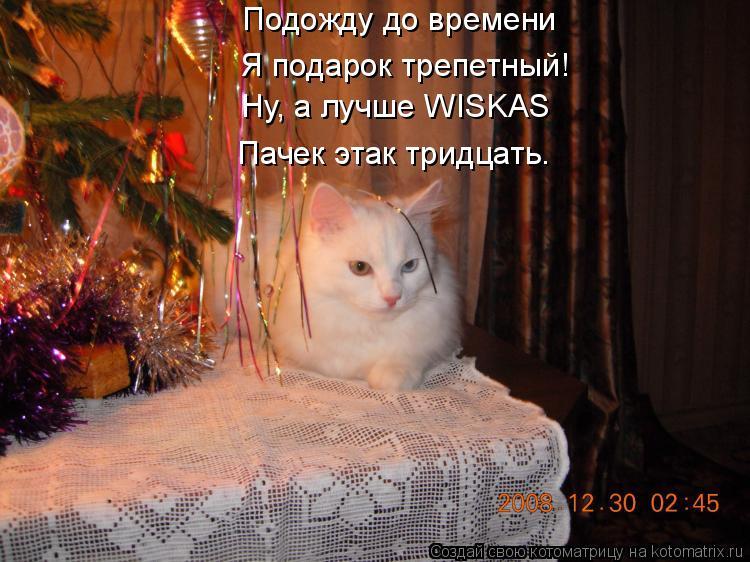 Котоматрица: Подожду до времени Я подарок трепетный! Ну, а лучше WISKAS  Пачек этак тридцать.