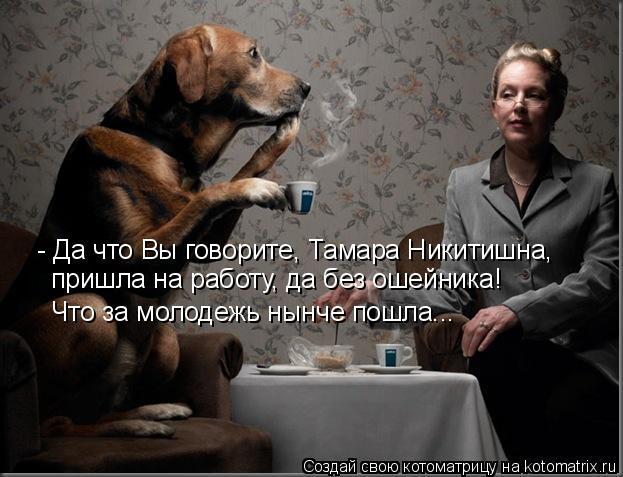 Котоматрица: - Да что Вы говорите, Тамара Никитишна,  пришла на работу, да без ошейника! Что за молодежь нынче пошла...