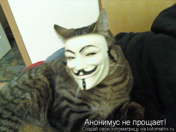 Котоматрица: Анонимус не прощает!