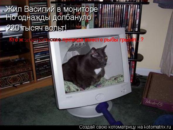 Котоматрица: Жил Василий в мониторе Но однажды долбануло 220 тысяч вольт! Кто ж электрические провода вместо рыбы грызёт...? электрические