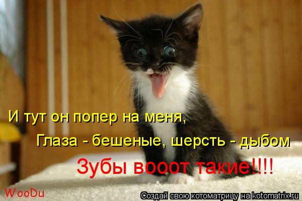 смайлик бешеный: