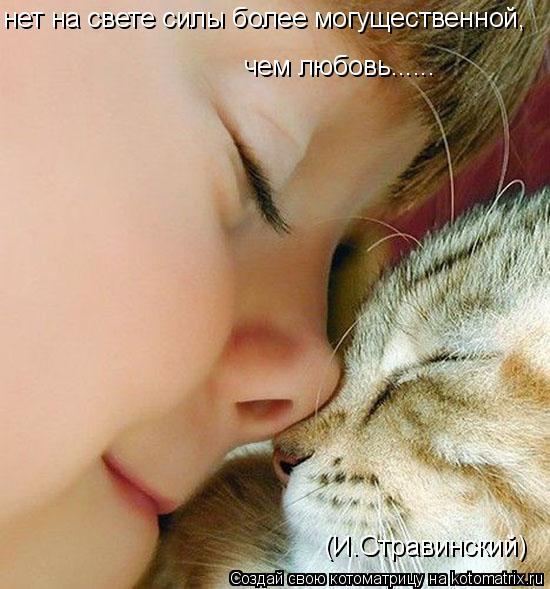 Котоматрица: нет на свете силы более могущественной, чем любовь...... (И.Стравинский)