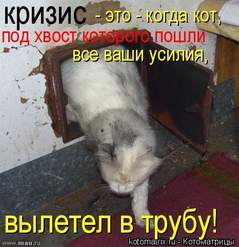Котоматрица: кризис  под хвост которого пошли все ваши усилия, вылетел в трубу!  - это - когда кот,