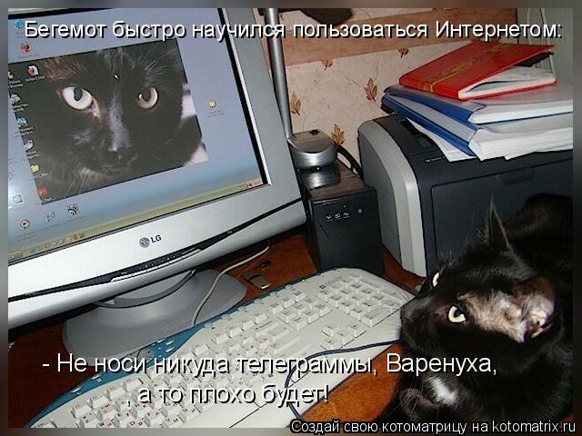 Котоматрица: , а то плохо будет!  - Не носи никуда телеграммы, Варенуха, Бегемот быстро научился пользоваться Интернетом: