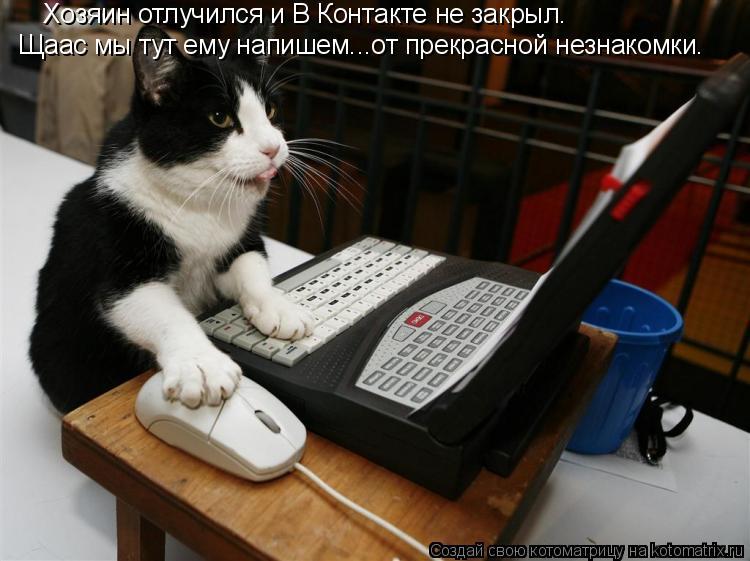 Котоматрица: Хозяин отлучился и В Контакте не закрыл. Щаас мы тут ему напишем...от прекрасной незнакомки.