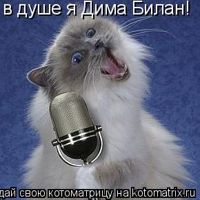 Котоматрица: в душе я Дима Билан!