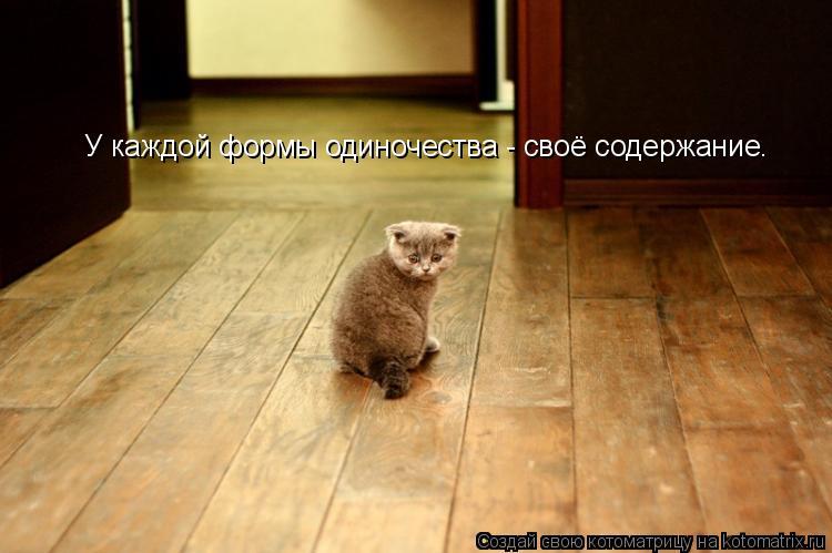 Котоматрица: У каждой формы одиночества - своё содержание.
