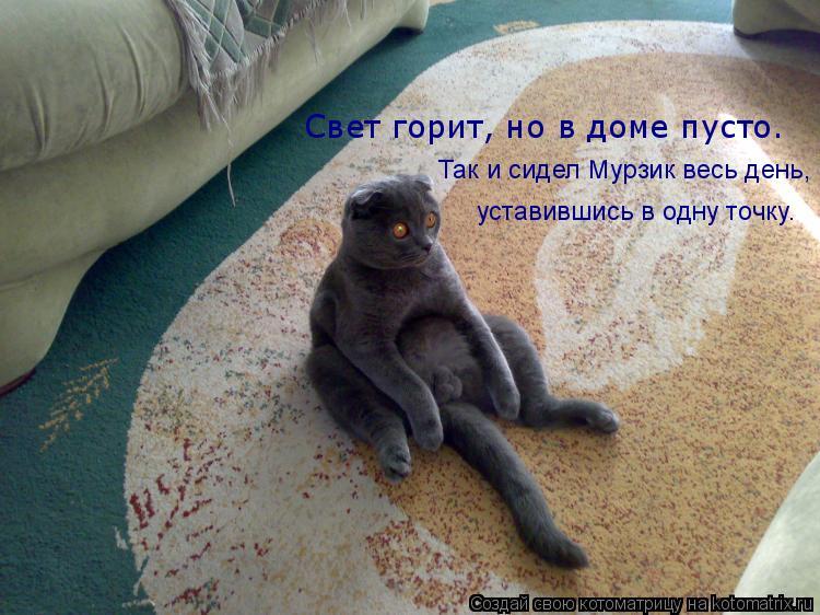 Котоматрица: Свет горит, но в доме пусто. Так и сидел Мурзик весь день, уставившись в одну точку.