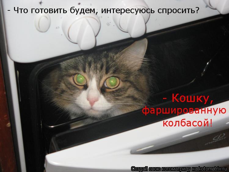 Котоматрица: - Что готовить будем, интересуюсь спросить? - Кошку,  фаршированную  колбасой!