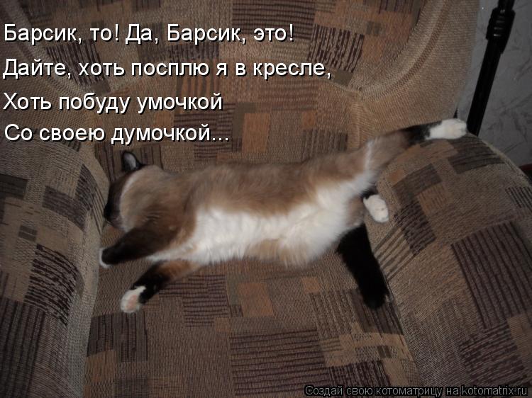 Котоматрица: Барсик, то! Да, Барсик, это! Дайте, хоть посплю я в кресле, Хоть побуду умочкой  Со своею думочкой...