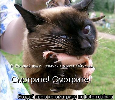 Котоматрица: Смотрите! Смотрите! Я! Ем свой язык... язычок а может зайчонка