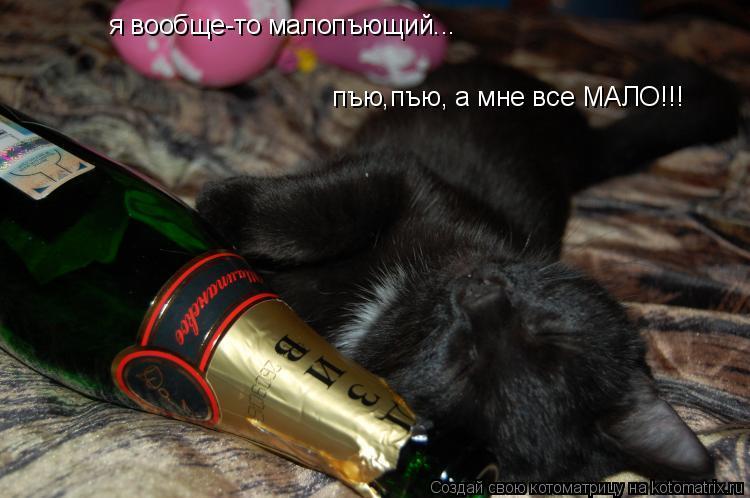 Котоматрица: я вообще-то малопъющий... пъю,пъю, а мне все МАЛО!!!