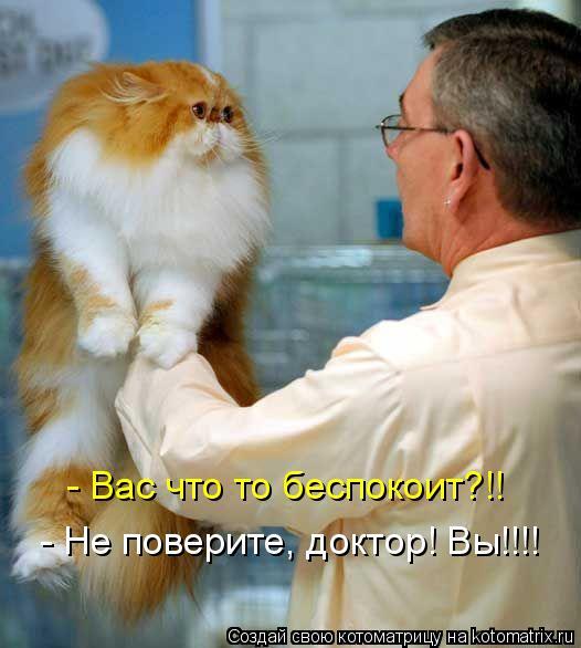 Котоматрица: - Вас что то беспокоит?!! - Не поверите, доктор! Вы!!!!