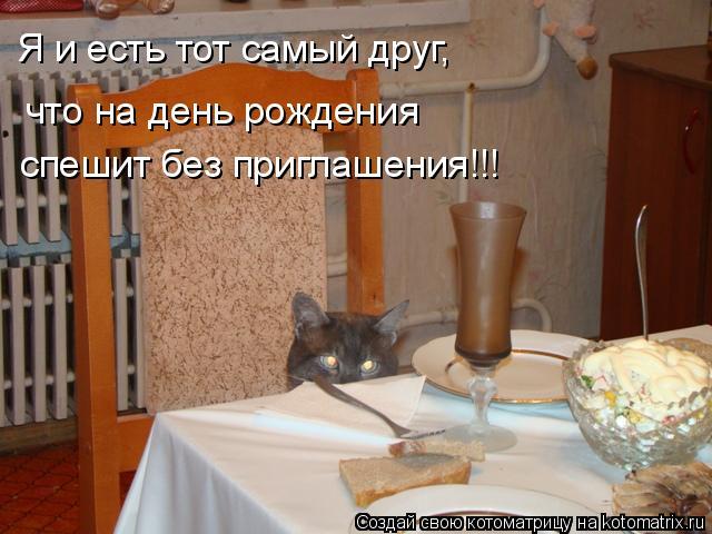 Котоматрица: Я и есть тот самый друг, что на день рождения спешит без приглашения!!!