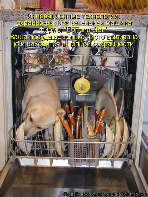 """Котоматрица: Инновационные технологии: охранно-вылизывательная машина фирмы """"Дог энд Дог"""". Ваша посуда не только чисто вылизана, но и находится в полной"""
