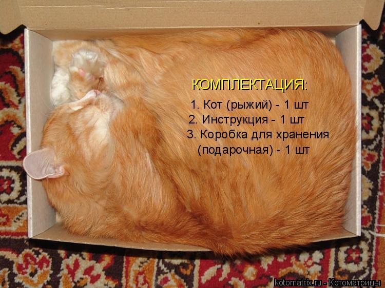Котоматрица: КОМПЛЕКТАЦИЯ: 1. Кот (рыжий) - 1 шт 2. Инструкция - 1 шт 3. Коробка для хранения  (подарочная) - 1 шт