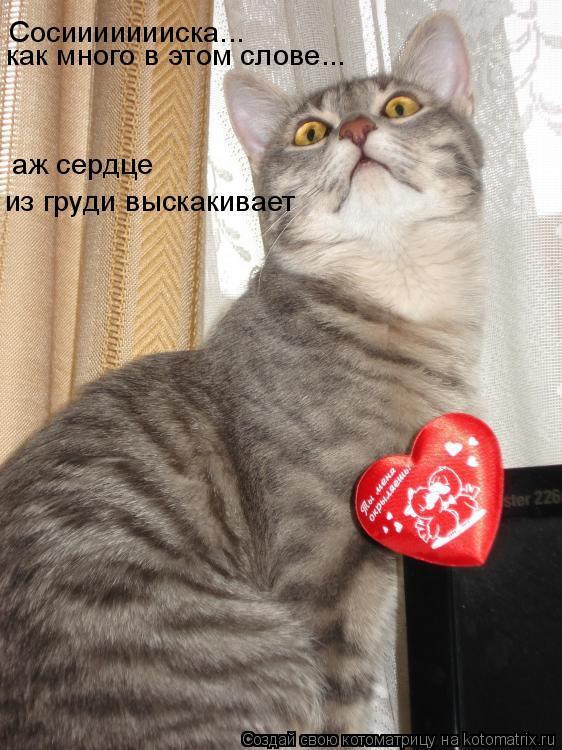 Котоматрица: Сосиииииииска...как много в этом слове....аж сердце из груди выпрыгивает Сосиииииииска... как много в этом слове... аж сердце из груди выскакив