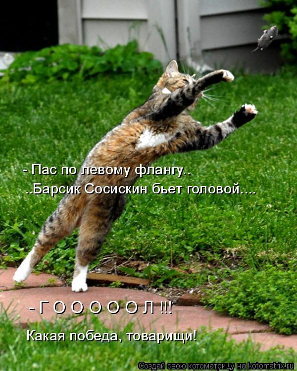 Котоматрица: - Пас по левому флангу.. ..Барсик Сосискин бьет головой.... Какая победа, товарищи! - Г О О О О О Л !!!
