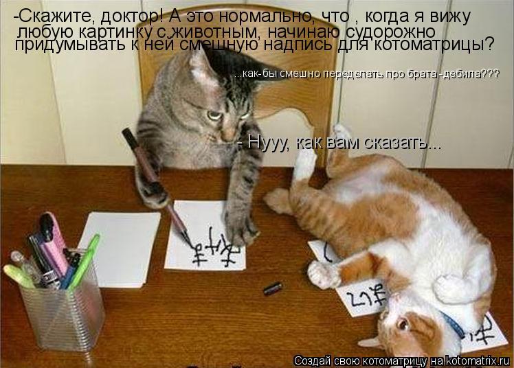 Котоматрица: -Скажите, доктор! А это нормально, что , когда я вижу  любую картинку с животным, начинаю судорожно  придумывать к ней смешную надпись для кот