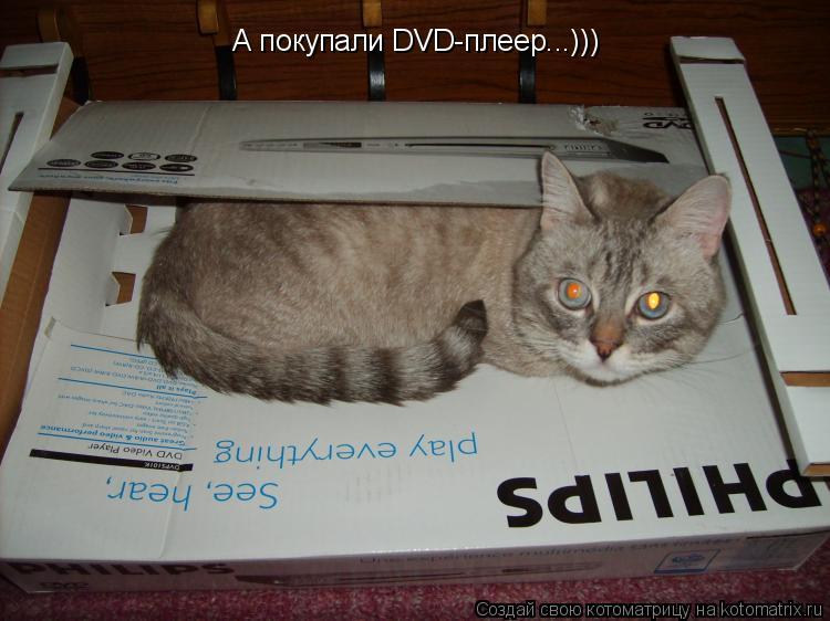 Котоматрица: А покупали DVD-плеер...)))