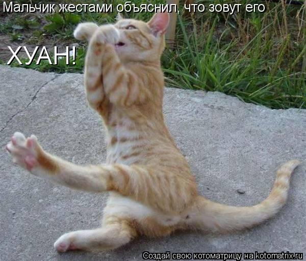 Котоматрица: Мальчик жестами объяснил, что зовут его  ХУАН!
