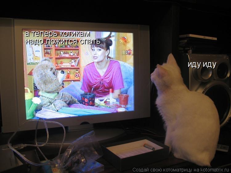 Котоматрица: а теперь котикам надо ложится спать иду иду