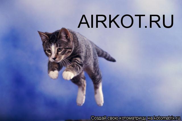 Котоматрица: AIRKOT.RU