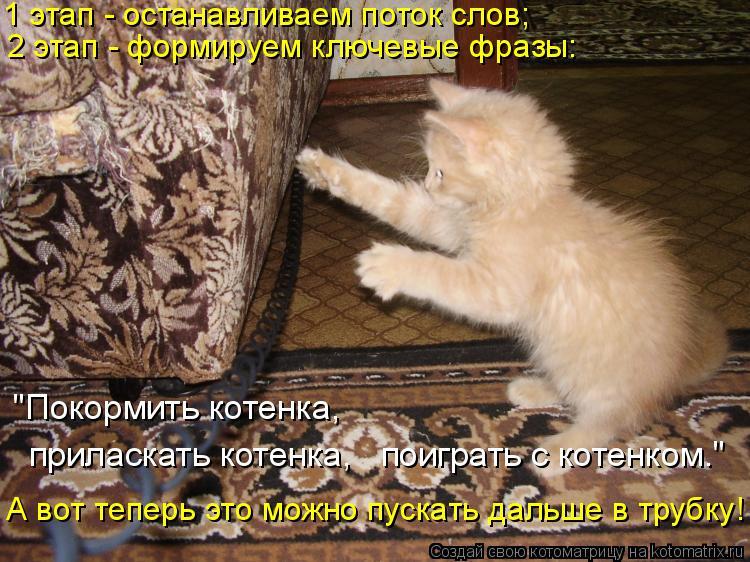 """Котоматрица: 1 этап - останавливаем поток слов; 2 этап - формируем ключевые фразы:  приласкать котенка,   поиграть с котенком."""" """"Покормить котенка, А вот тепе"""