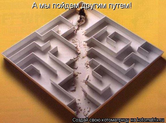 Котоматрица: А мы пойдем другим путем! А мы пойдем другим путем! А мы пойдем другим путем!