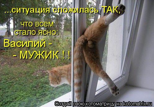 Котоматрица: что всем  стало ясно: Василий - ...ситуация сложилась ТАК, - МУЖИК ! !