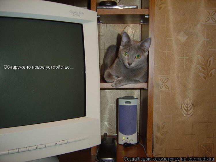 Котоматрица: Обнаружено новое устройство...