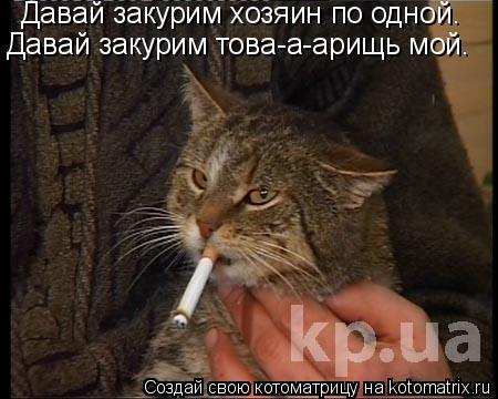 Котоматрица: Давай закурим хозяин по одной. Давай закурим това-а-арищь мой.