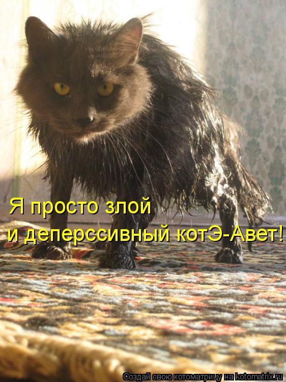 Котоматрица: Я просто злой и деперссивный котЭ-Авет!!!!