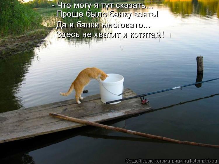 Котоматрица: - Что могу я тут сказать... Проще было банку взять! Да и банки многовато... Здесь не хватит и котятам!
