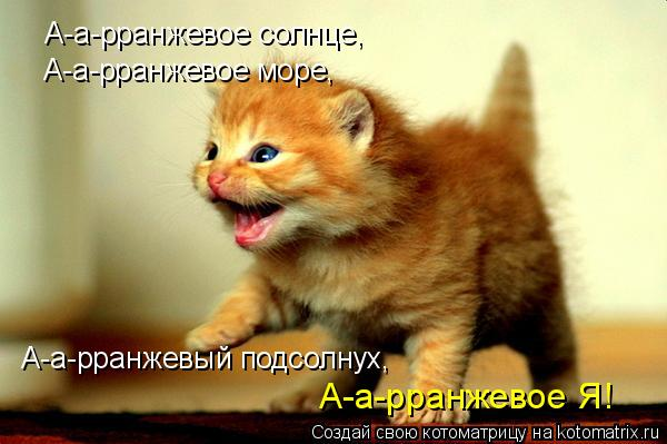 http://kotomatrix.ru/images/lolz/2009/11/28/418066.jpg