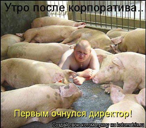 """Кошки смотрят на нас сверху вниз.  Свиньи обращаются с нами, как с равными. """"  У. Черчилль.   """"Я люблю свиней."""