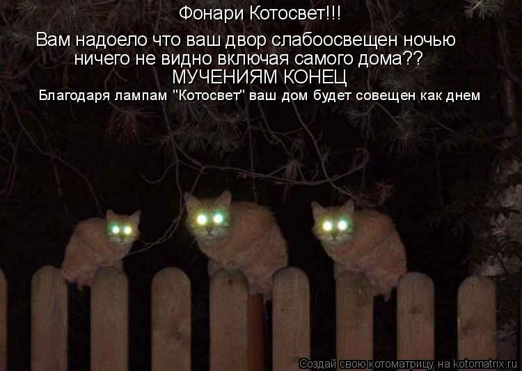 """Котоматрица: Фонари Котосвет!!! Вам надоело что ваш двор слабоосвещен ночью ничего не видно включая самого дома?? МУЧЕНИЯМ КОНЕЦ Благодаря лампам """"Котосв"""