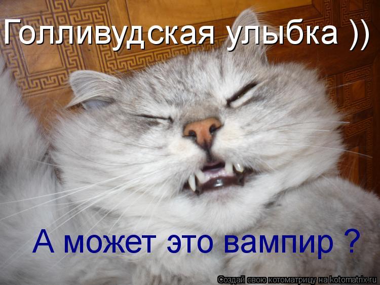 Котоматрица: Голливудская улыбка )) А может это вампир ?