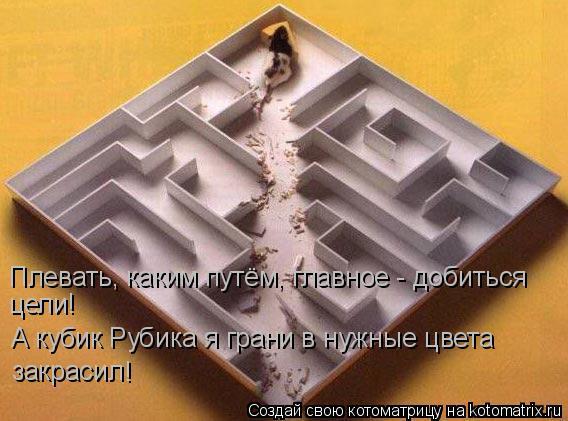 Котоматрица: А кубик Рубика я грани в нужные цвета закрасил ! Плевать, каким путём, главное - добиться цели!