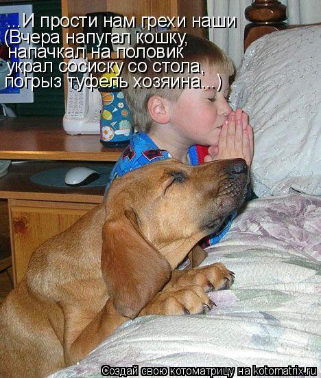 Котоматрица: ...И прости нам грехи наши (Вчера напугал кошку, напачкал на половик украл сосиску со стола, погрыз туфель хозяина...)