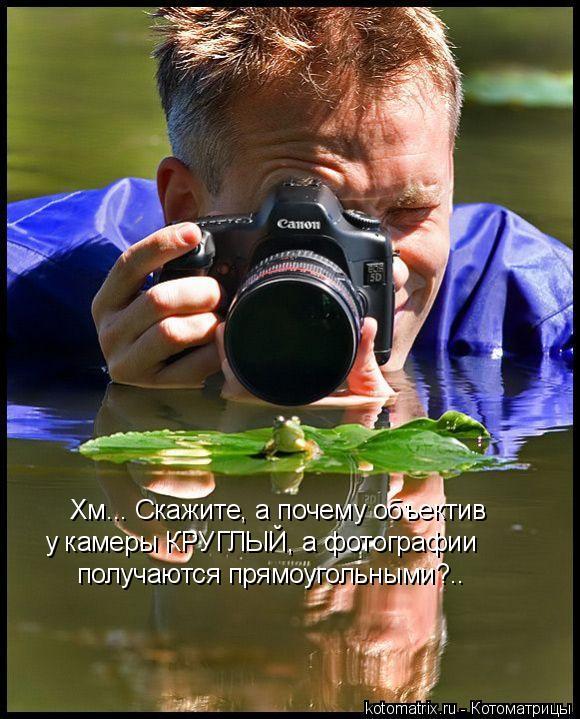 Котоматрица: Хм... Скажите, а почему объектив  у камеры КРУГЛЫЙ, а фотографии получаются прямоугольными?..