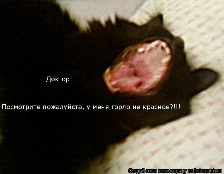 Котоматрица: Посмотрите пожалуйста, у меня горло не красное?!!! Доктор!