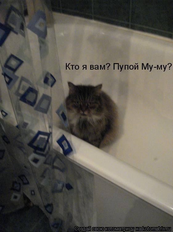 Котоматрица: Кто я вам? Пупой Му-му?