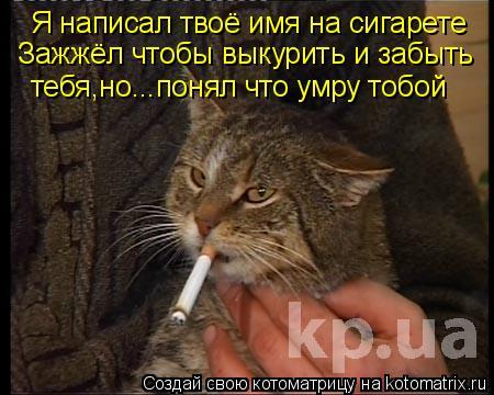 Котоматрица: Я написал твоё имя на сигарете Зажжёл чтобы выкурить и забыть тебя,но...понял что умру тобой