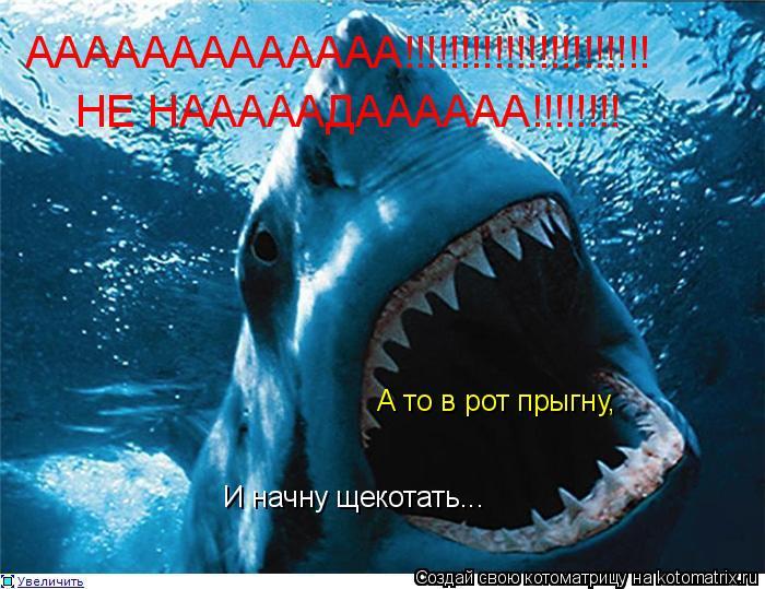 Котоматрица: ААААААААААААА!!!!!!!!!!!!!!!!!!!!!! НЕ НАААААДАААААА!!!!!!!! А то в рот прыгну, И начну щекотать...